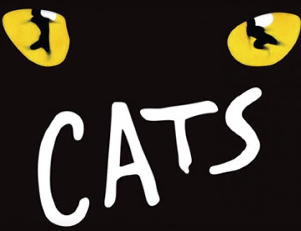 Jak se zkouší Kočky?